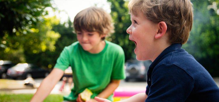 Queres brincar comigo? As interações entre pares com e sem incapacidade no jardim-de-infância