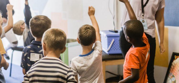Estarão as crianças envolvidas? Observar para adequar